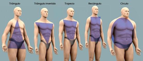 Estudio Antropometrico-Analisis silueta-Como vestir-tipos de cuerpos_hombres Sonia McRorey Asesor de Imagen-Personal Shopper